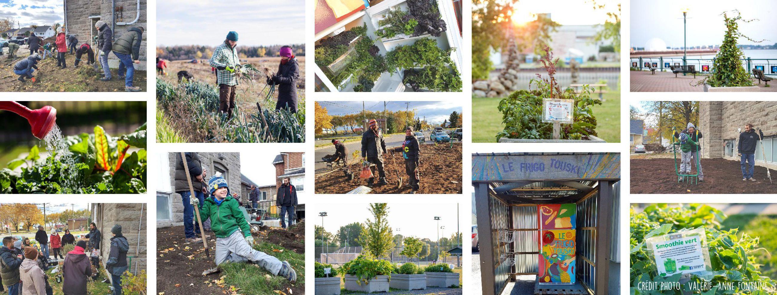 Mouvement écologique ecologique du comté compté de Richelieu bas-Richelieu Sorel-Tracy environnement jardins incroyables comestibles forêt nourricière MRC ville Frigo touski Mouvement_ecologique_du_comté_de_richelieu Sorel-Tracy.jpg